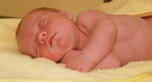 newborn-392990_640