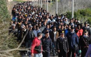 invasion-migratoire
